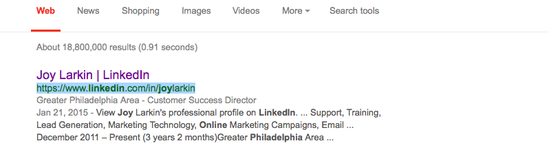 Google Search Snippet for LinkedIn Public Profile