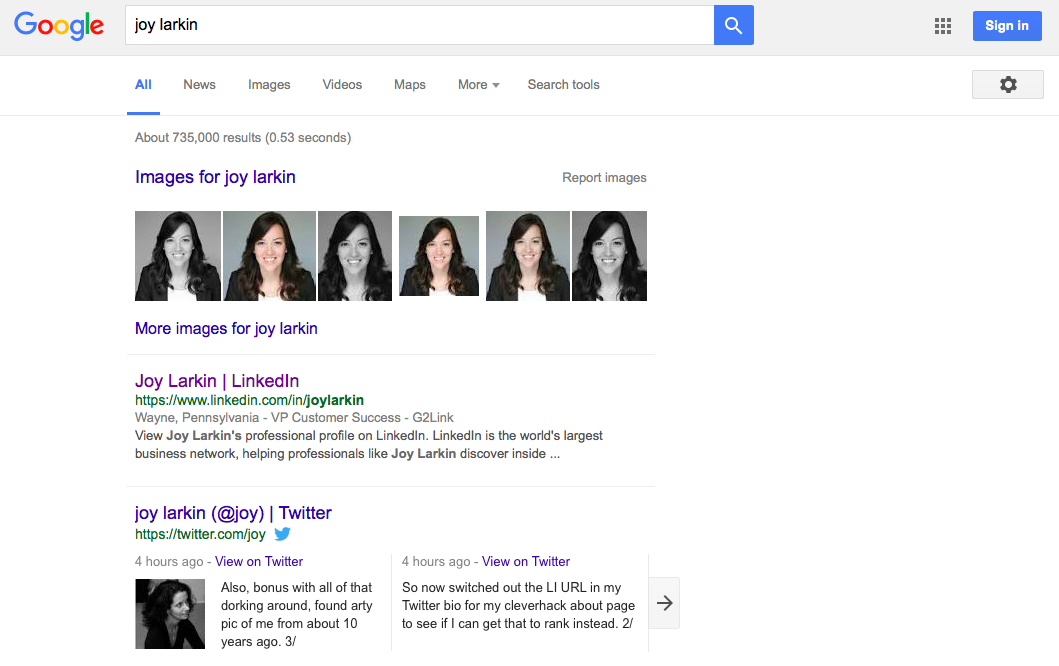 Joy Larkin SEO Google SERP