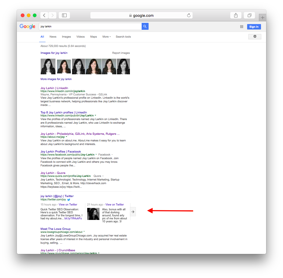 Joy Larkin Google SERP before tweeting
